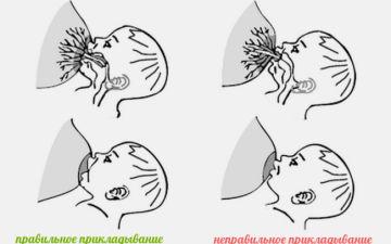 Как правильно прикладывать ребенка во время кормления