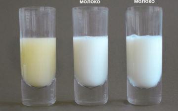 Что влияет на состав грудного молока