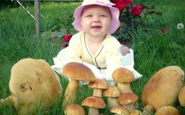 Почему детям нельзя есть грибы