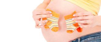 признаки-двойни-на-ранних-сроках-беременности