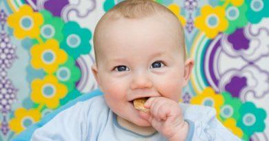 Как научить ребенка жевать и есть твердую пищу