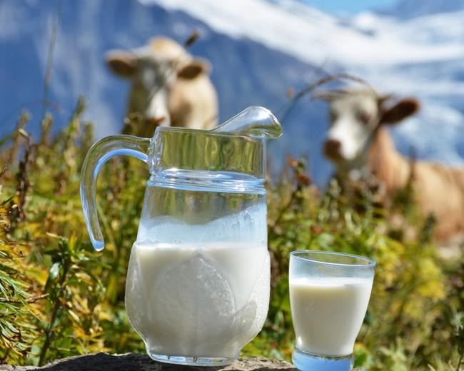 Графин молока на природе